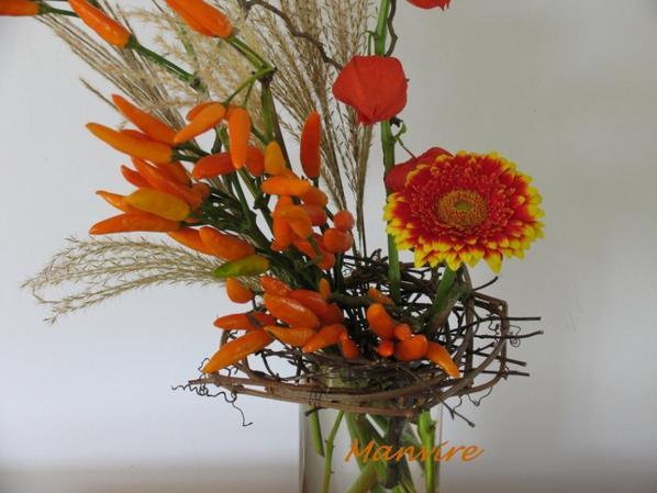 Phisalis, germini, gramin�es, piment, brindilles en guise de pique-fleurs
