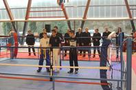 COUPE DE FRANCE ZONE SUD KARATE LIGHT CONTACT SAINTE MAXIME 10 ET 11 JANVIER 2015