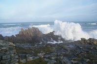 Grande mar�e, 1er f�vrier 2014 ! suite 2