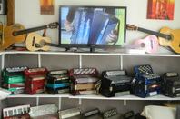 123 musette et une partie de ma collection d accord�ons