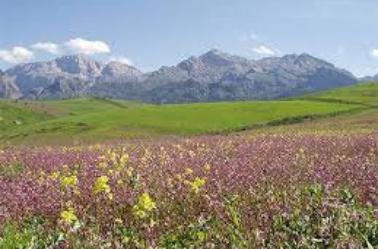 ma grand kabylie