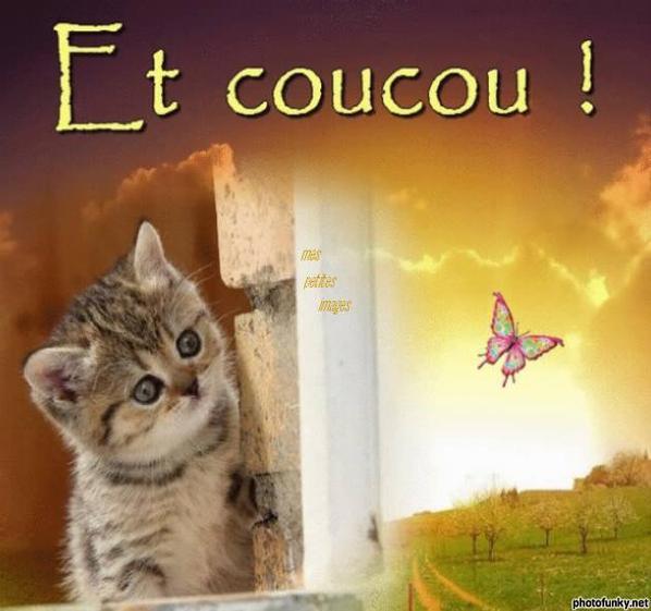 Très bon week-end a vous toutes et tous!!!!