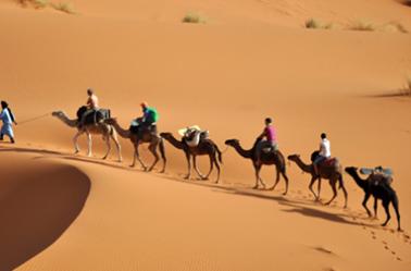 le sud Algerien