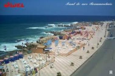 Les cotes algériennes