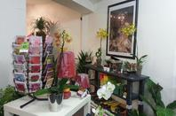 ouverture de notre magasin!!!