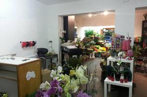 ouverture de kevnelle fleurs