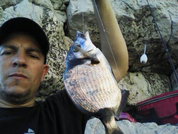 sortie a la canne du mois d aout un r�gale 9 sarts et une bonne trentaines de poisson de roche