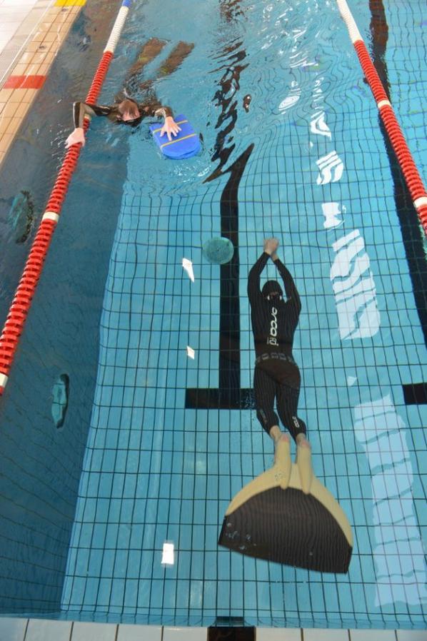 Ce dimanche comp tition d 39 apn e la piscine de mouscron for Piscine des dauphins mouscron