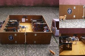 la nouvelle curie centre questre schleich. Black Bedroom Furniture Sets. Home Design Ideas