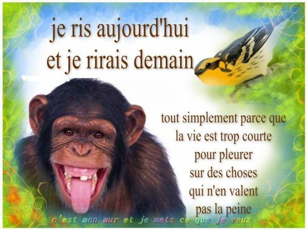 La faune et la flore de la Sainte baume en texte et photos