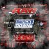 raw-smackdown-ecw-du-59
