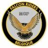mcp-falcon-riders