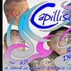 CapilliR