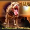 Goldendoggystyle