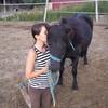 xx-love-horse78-xx