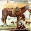 western-alsace