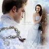 Twilight-Amour-Defendu