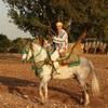ouledsaid2008