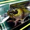 fish350