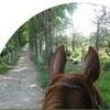chevaux-a-moi