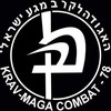 Krav-Maga-Fight