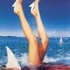 requin--blanc007