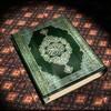 Muslimia-W