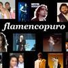 flamencopuro