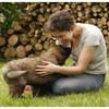 animal-whisper