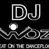 dj-woz