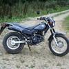 colombo1989