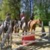 glouglou-horses