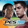 Pes-2008-LFP