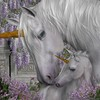 mapassion-thehorses