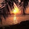 Ibiza-Miami