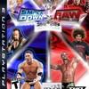 wwe-fan-raw-smackdown
