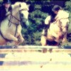 love-horsedu31