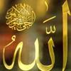 islam7369