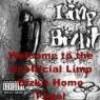 limp-bizkit-s226