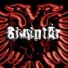 Bota-shqiptare