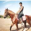 kebir-cheval