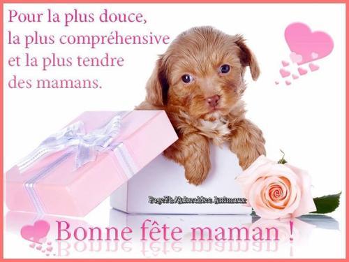 31/05/2015 / Bonne f�te aux Mamans