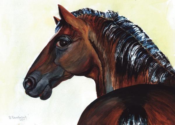 Nachbars Pferd / Spruch der Woche
