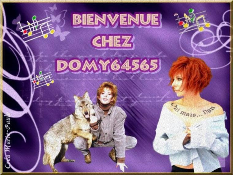 BIENVENUE CHEZ DOMY64565