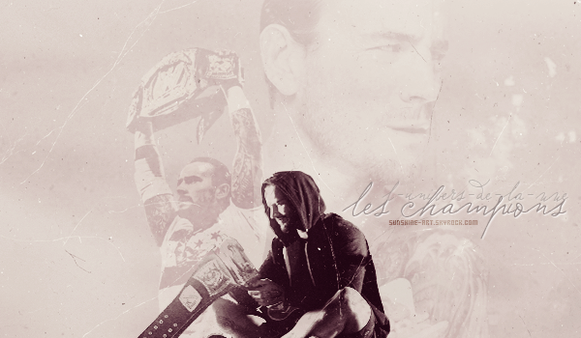 Les diff�rents Champions de la WWE !!