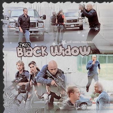 "Ncis Los Angeles  -  2x01  ""Human Traffic""   & 2x02 ""Black Widow"""