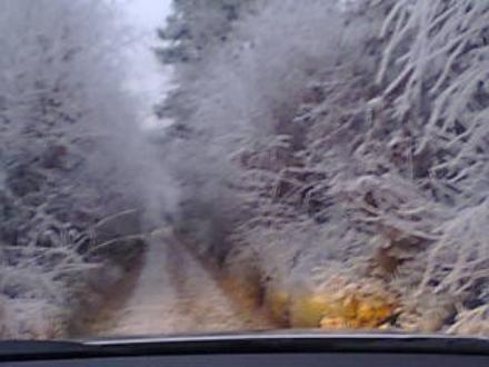 bonjour mes Amies et Amis ,puisque la neige est au rendez vous ,je profite pour partager avec vous ces somptueux paysages que j ai pris avant hier ,j'éspère que sa ravira vos yeux