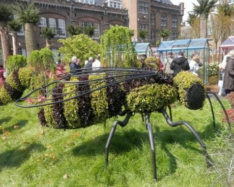 Les insectes: expo de Gand
