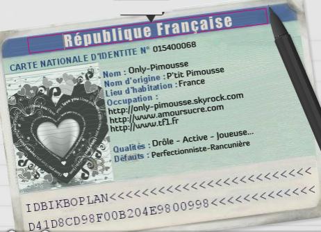 •• Bienvenue | Article n�0l | > Only-Pimousse �