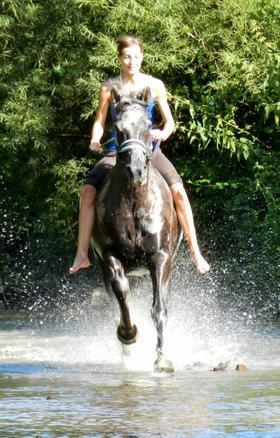 Il n'y a pas de secrets aussi intimes que ceux d'un cavalier et de son cheval